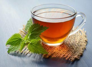 čaj-od-koprive