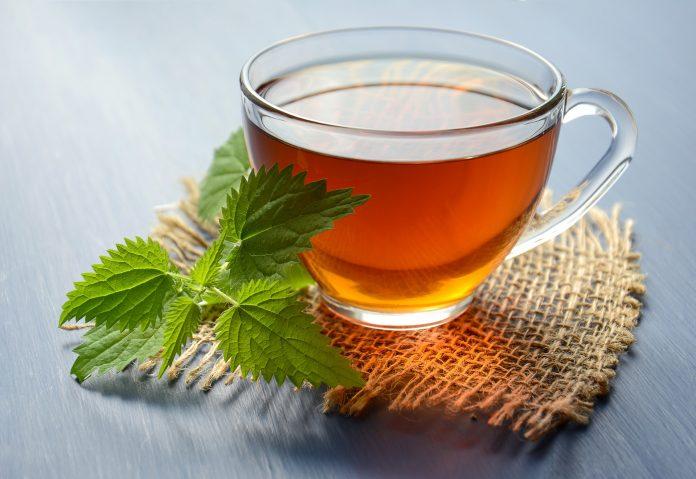 чај-од-коприве