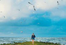 devojka-ptice-nebo