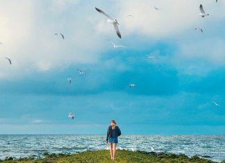 девојка-птице-небо