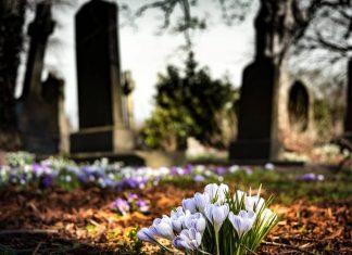 гробље-цвеће
