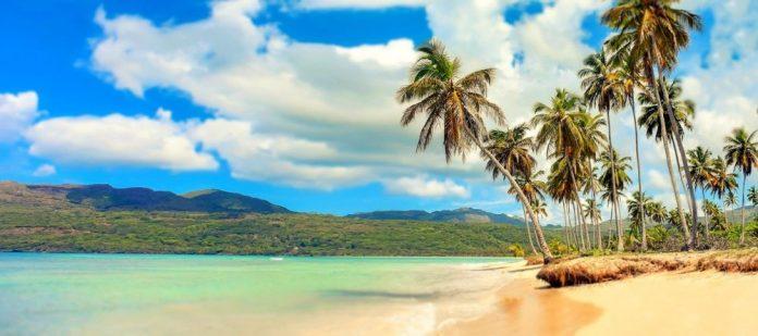 plaža-palme