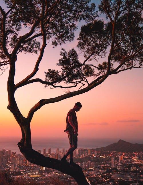 човек-дрво
